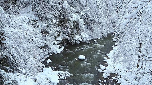 Thumbnail for River in the Winter