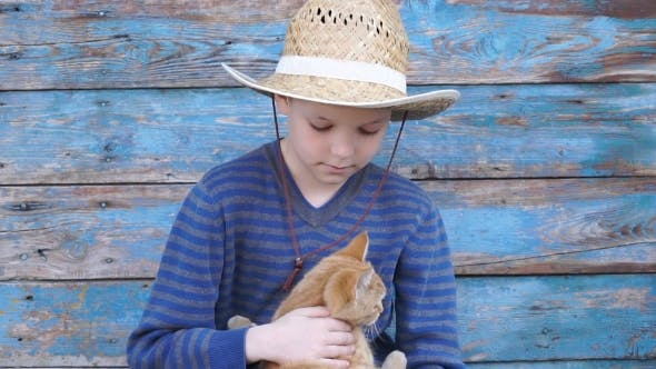 Thumbnail for Footage Boy Playing With a Cat