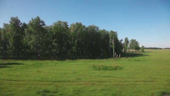 Thumbnail for Siberian Landscape - View From Train