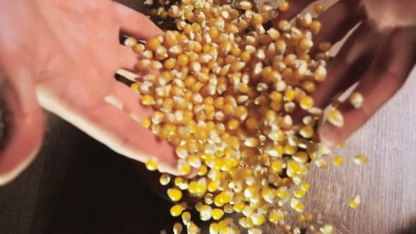 Thumbnail for Woman's Hand Pouring Pop Corn Into a Bowl.