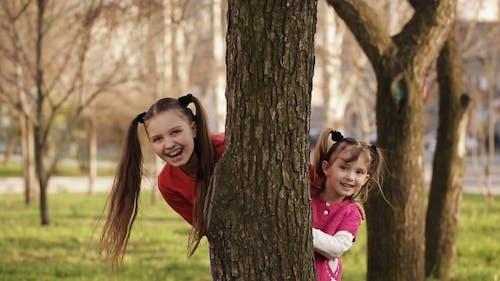 Fröhlich Mädchen spielen Verstecken und suchen hinter einem Baum