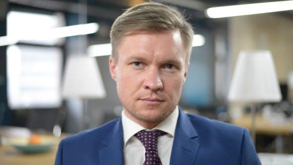 Thumbnail for Portrait of Businessman