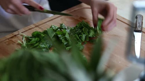 Close-Up Of Cutting Spinach 3