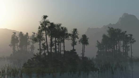 Cover Image for Islands With Trees On Lake With Fog 1