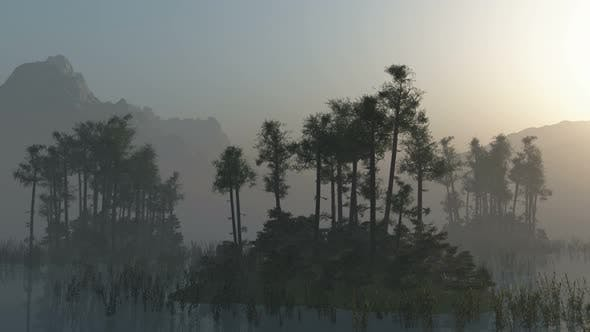 Cover Image for Islands With Trees On Lake With Fog 2