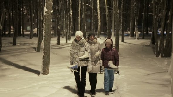 Thumbnail for Family Walk In a Winter Park
