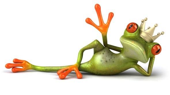 Fun prince frog