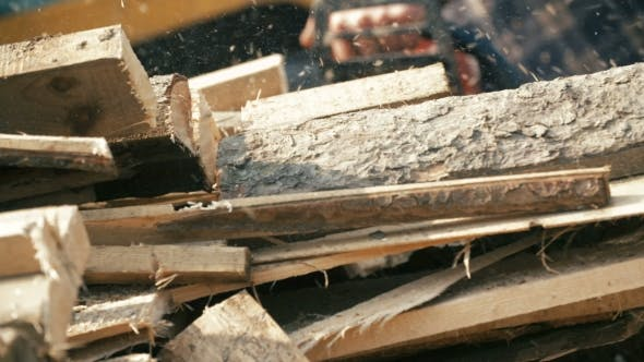 Thumbnail for Cutting Wood In a Sawmill