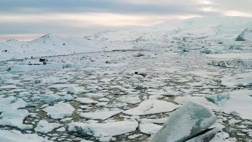 Icebergs in Jokulsarlon Glacial Lagoon. Vatnajokull National Park, Iceland