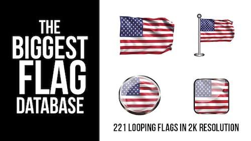 221 Looping World Flags