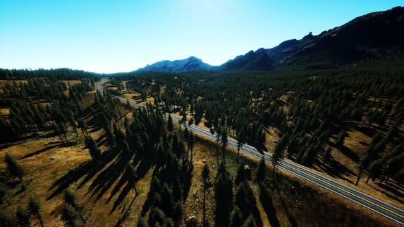 Aerial View of Mountain Road and Forest