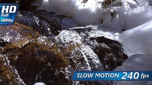 Murmur of a Spring Creek