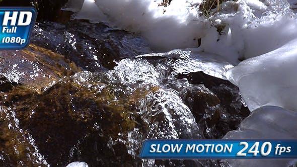 Thumbnail for Murmur of a Spring Creek