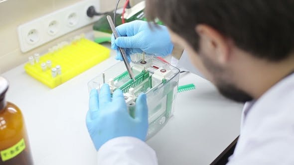 Thumbnail for Laboratory Workplace For DNA Test