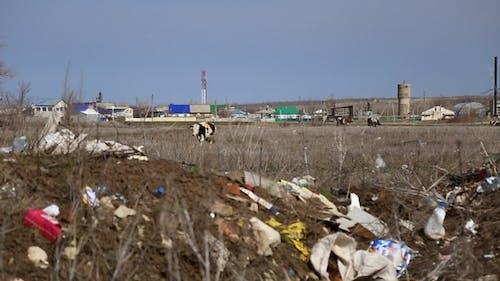 Garbage Dump Household Waste