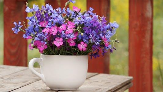 Wild Flowers, Carnation and Cornflower