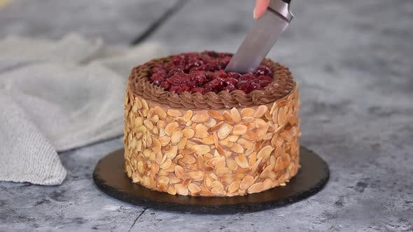 Cutting a Chocolate Cherry Cake with Almond Flakes.