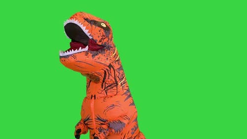 A Man Dressed in a Funny Blowup Dinosaur Costume Appearing and Dancing on a Green Screen Chroma Key