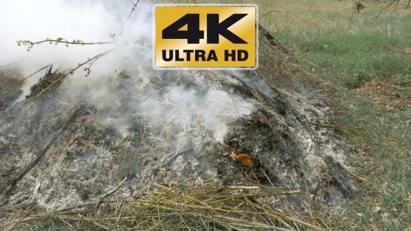 Thumbnail for Burning Grass Foliage Heap With Heavy Dense Smoke