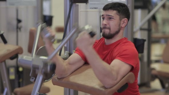 Thumbnail for Man Performs Exercises For Biceps And Triceps