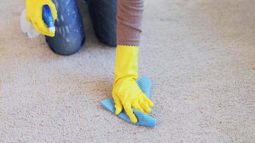 Woman In Gloves Cleaning Carpet Or Rug With Rag 48
