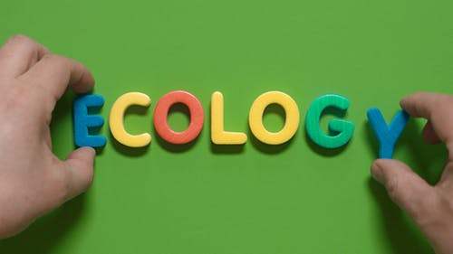 Wort Ökologie