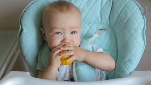 Thumbnail for Adorable Baby Boy Eating Lemon