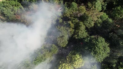 Flying Above Fire in the Nature