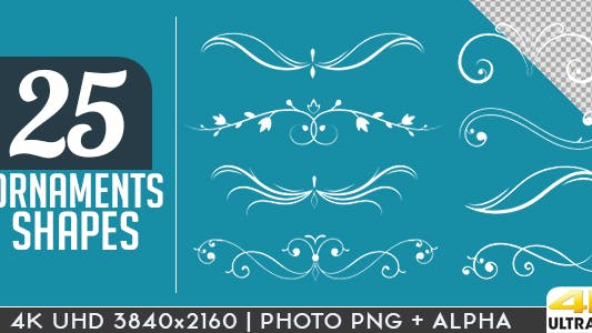 Thumbnail for Flourish and Ornaments Pack