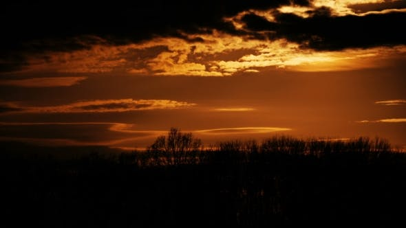 Thumbnail for During Sunset Over Tree Line.