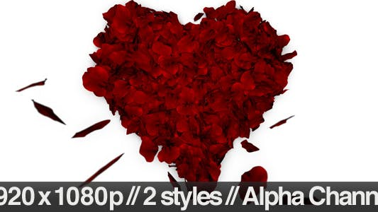 Thumbnail for Rose Petals Fall into Heart Shape - Alpha Included