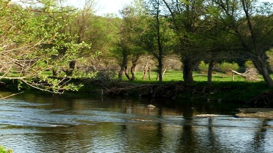 Thumbnail for River in Early Spring 3