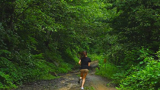 Thumbnail for Active Runner Exercising in Nature