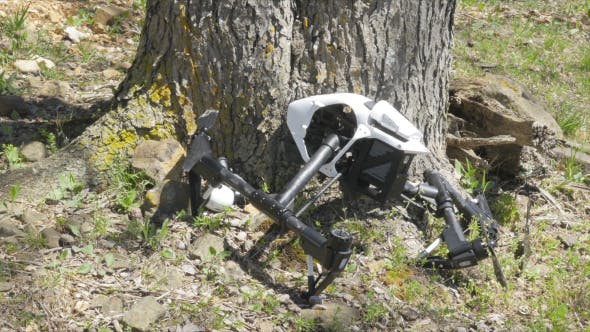 Thumbnail for Drone Crashed into Tree Reveal