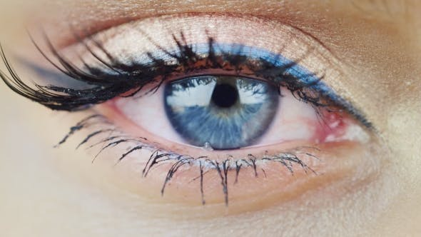 Thumbnail for The Eye Of a Young Woman With Blue Eyes