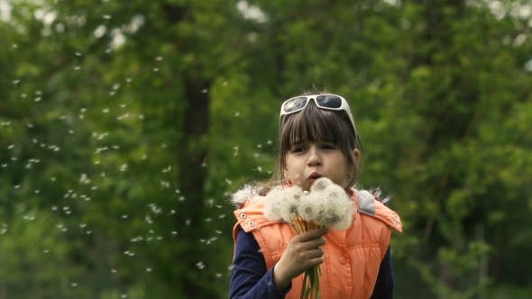 Thumbnail for Girl Blowing Dandelion Seeds