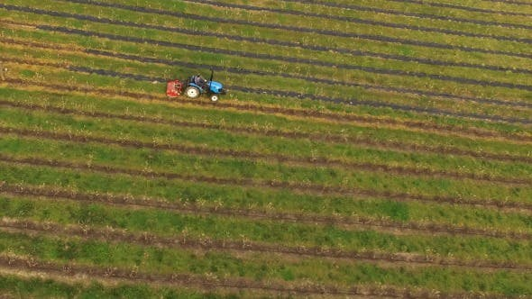Thumbnail for Man Working with Tractor in Agricultural Field