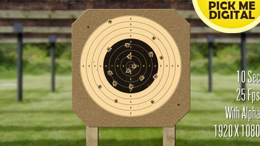 Cover Image for Target Shooting