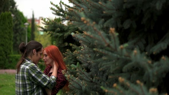Thumbnail for Happy Couple Kissing Among Spruces