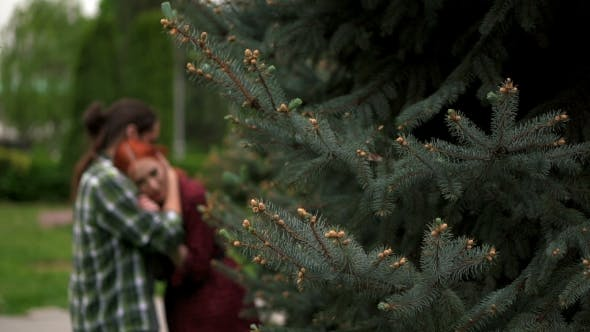 Thumbnail for Happy Couple In Summer Park Among Spruces In Blur