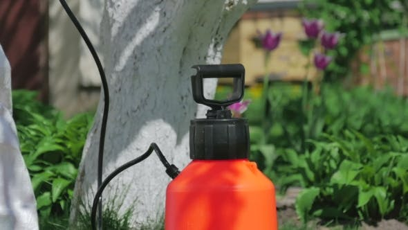 Cover Image for Man Preparing Pump Sprayer For Work In The Garden