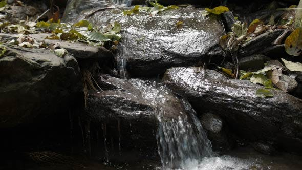 Thumbnail for Waterfall In Forest