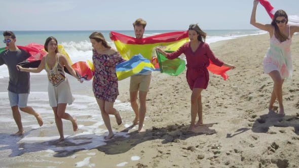 Cover Image for Group Of Friends With Flags Walking On Sunny Beach