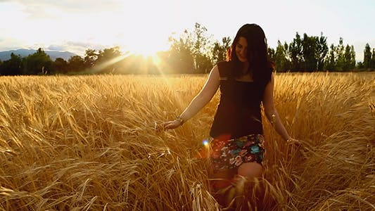 Cover Image for Woman Walking In a Wheat Field