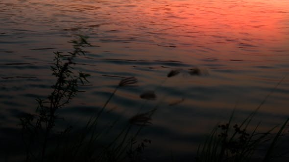 Thumbnail for Sunrise at a River
