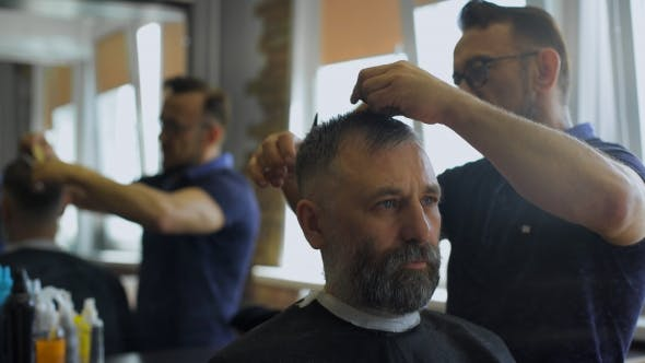 Thumbnail for Hairdresser Cuts Hair With Scissors In  Professional Hairdressing Salon