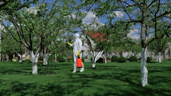 Thumbnail for Man In Protective Clothing Working In The Yard