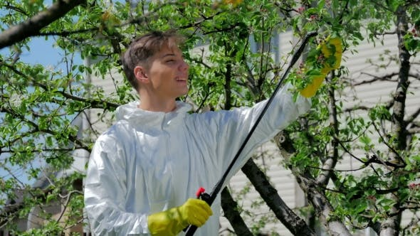 Thumbnail for Handsome Guy Spraying Chemicals In The Garden