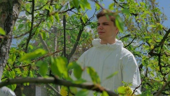Bauer Sprühen Bäume mit Chemikalien in Obstgarten
