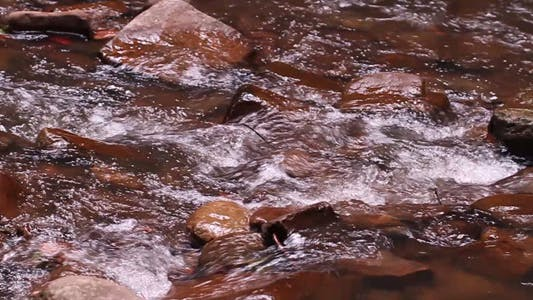 Thumbnail for River Flowing in Slow Motion Full HD